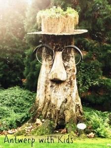 Antwerp Tree Face