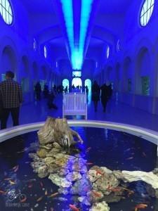 New Aquarium at Antwerp Zoo