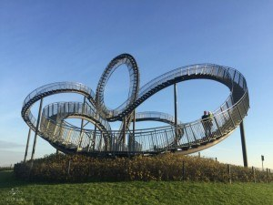 Tiger & Turtle Up Close