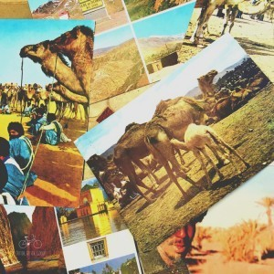 Morocco Postcards