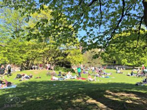 Hamburg Park Hangout