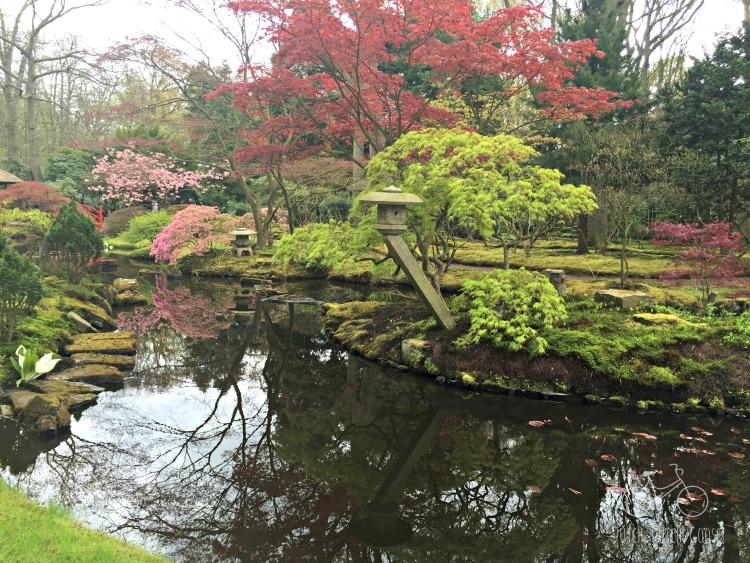 Japanese Garden in Den Haag Opening Day
