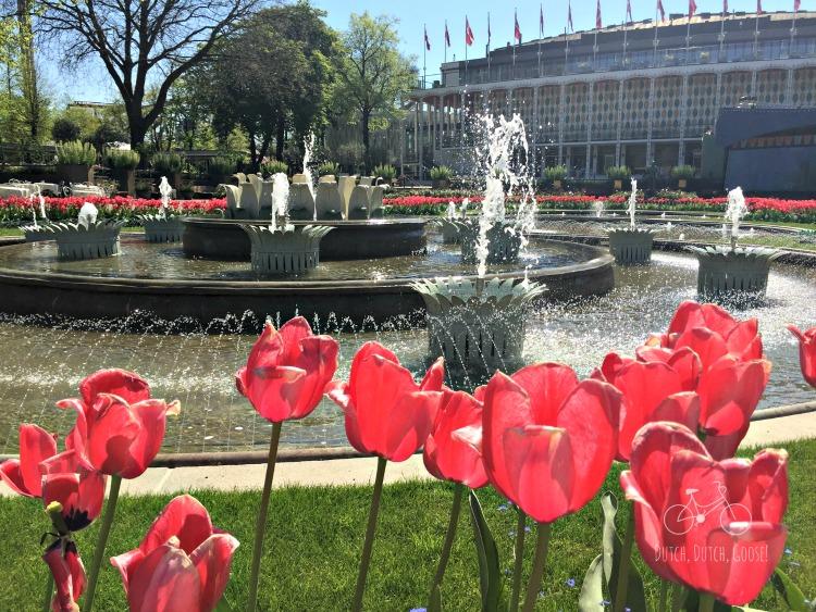 Tivoli Gardens Tulips