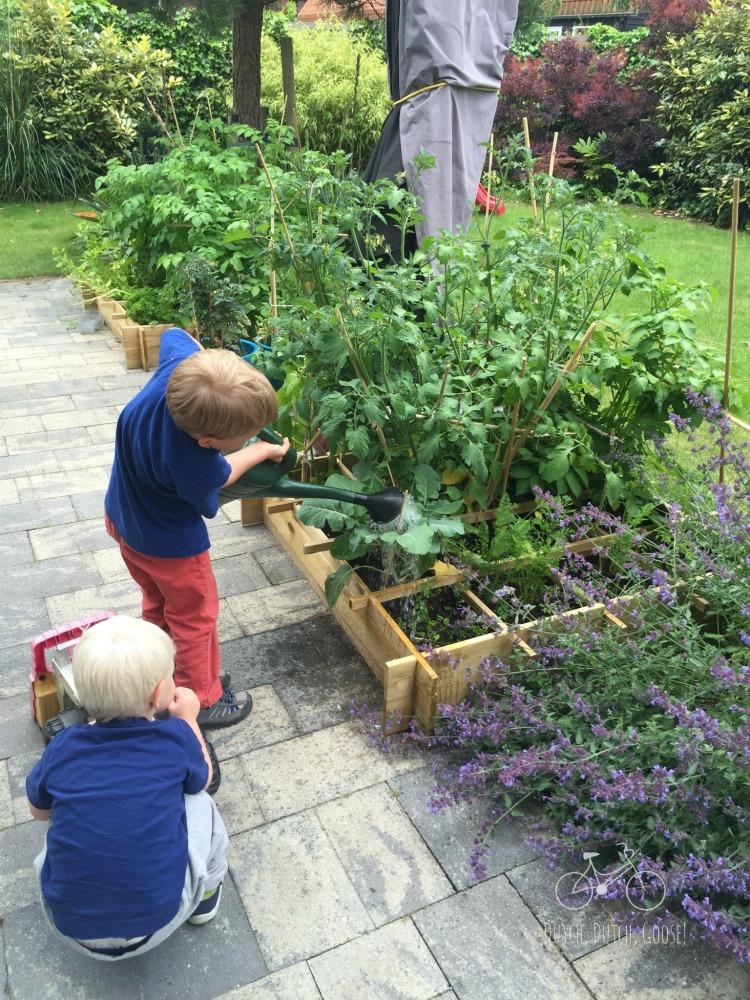 AH Garden June