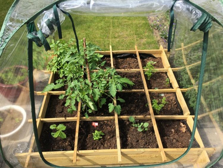 AH Garden Planted