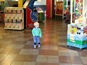 Avifauna Arcade