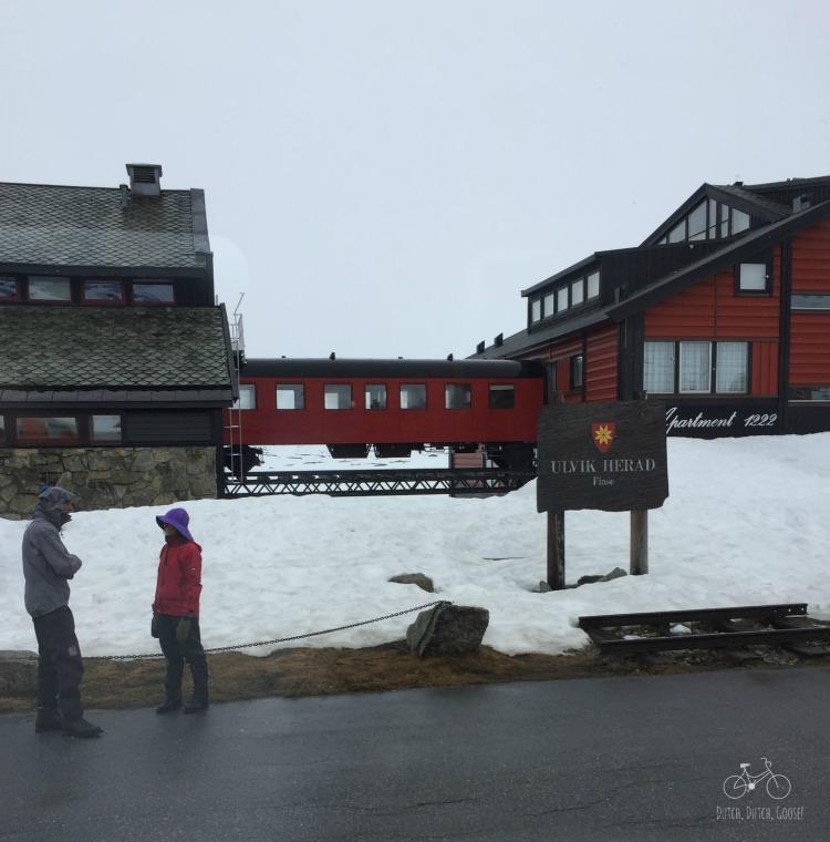 Finse Denmark Bergen Train