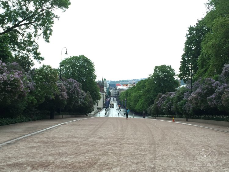 Oslo from the Palace