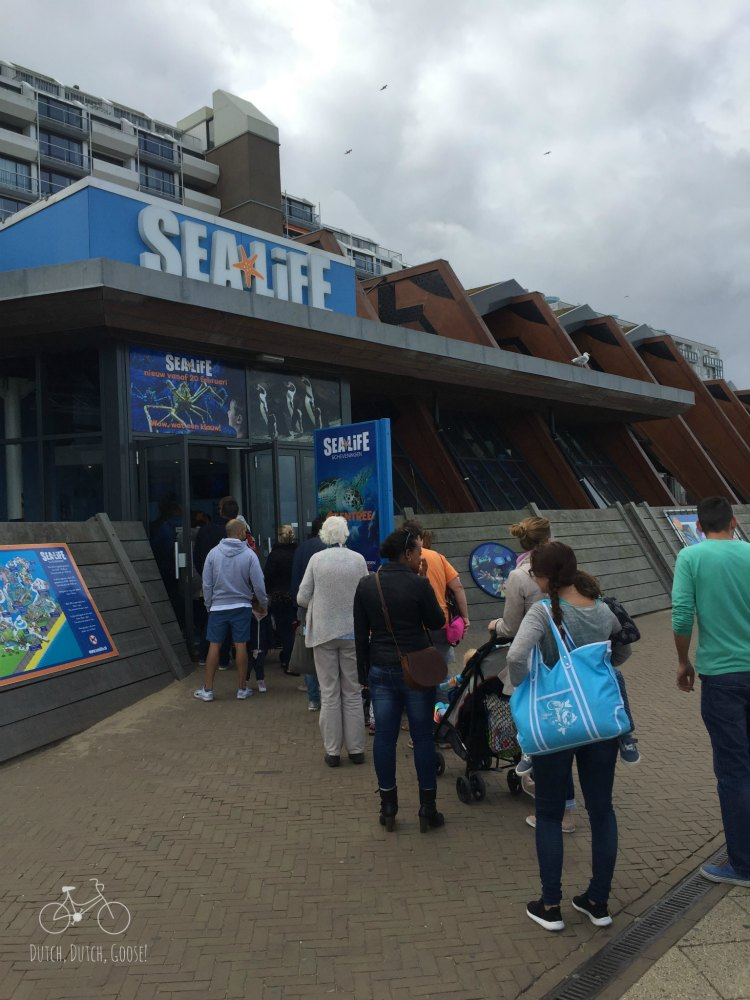 Sea Life Center Line