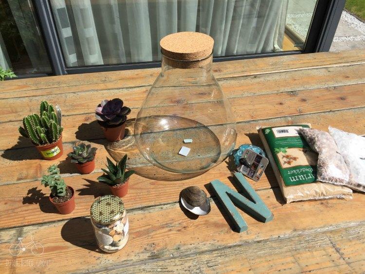 Terrarium Supplies DIY