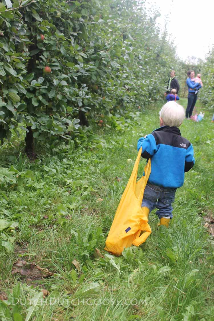 heavy-apple-sack